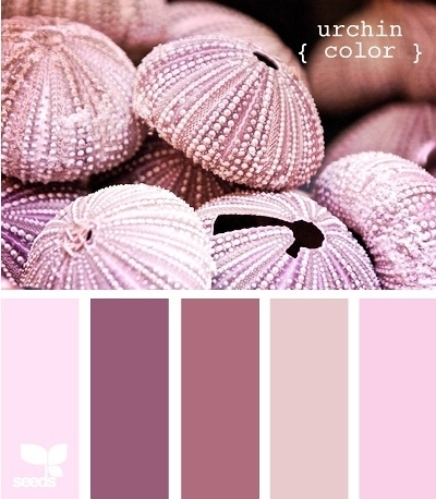 PPT配色之紫色魅力