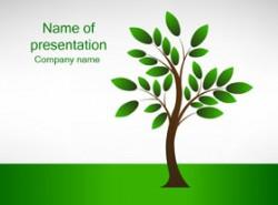 绿色,绿树,树叶,生长,成长,自然,种树,劳动节,植物,五一节