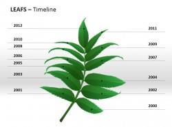 草本植物叶子