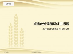 金黄色优美麦穗