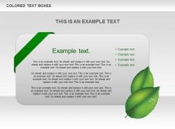 绿叶立体卡片文字说明