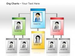 带头像图片的企业组织结构图