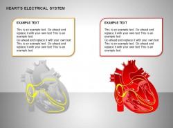 两方面心电系统效果图