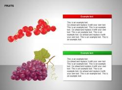 红色果子、葡萄图示