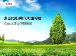 一颗树苗之绿色的大自然PPT模板下载