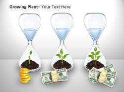 生长中的植物PPT模板下载
