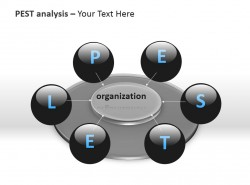 PESTEL分析之组织PPT模板下载