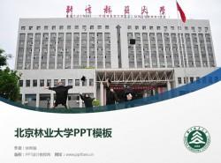 北京林业大学PPT模板下载