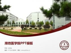 潍坊医学院PPT模板下载