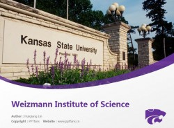 Kansas State University powerpoint template download | 堪萨斯州立大学PPT模板下载