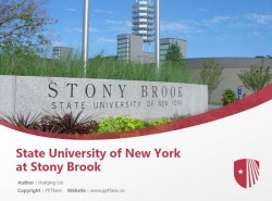 State University of New York at Stony Brook powerpoint template download | 纽约州立大学石溪分校PPT模板下载