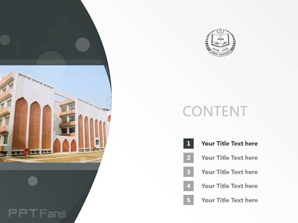 Jamia Hamdard University powerpoint template download | 佳米雅综合大学PPT模板下载_幻灯片预览图2