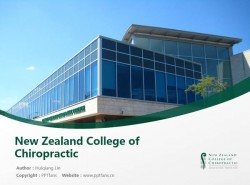 New Zealand College of Chiropractic powerpoint template download | 新西兰脊椎神经学院PPT模板下载