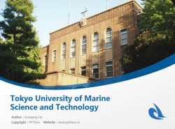 Tokyo University of Marine Science and Technology powerpoint template download | 东京海洋大学PPT模板下载