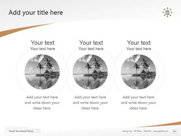 Tilburg University powerpoint template download | 蒂尔堡大学PPT模板下载_slide13