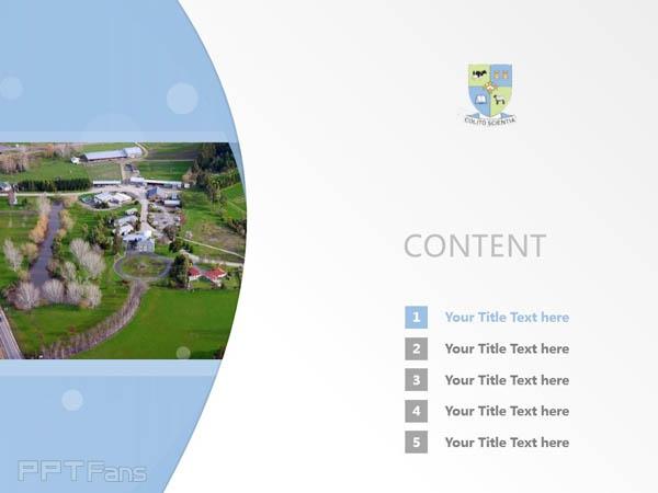 Telford Rural Polytechnic powerpoint template download | 林肯大学泰尔福特分校PPT模板下载_幻灯片预览图2