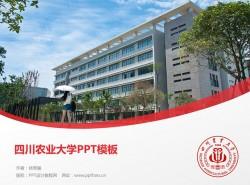 四川农业大学PPT模板下载