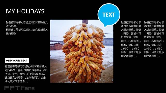 农业文化背景PPT_预览图4