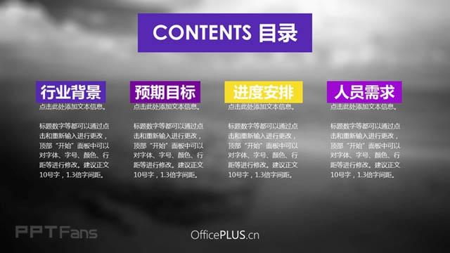色彩风格项目策划案ppt_预览图2