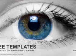 眼部视野PPT模板