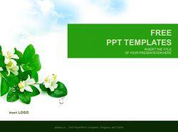漂亮的茉莉花背景PPT模板