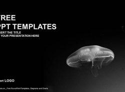 可怕的水母PPT模板下载