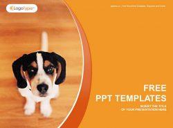 宠物狗PPT模板下载