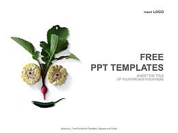 蔬菜PPT模板下載