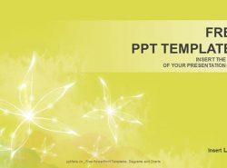 白色花朵PPT模板下载