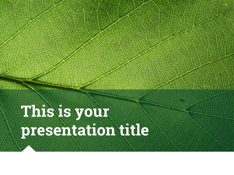 简约绿叶风格优质商务PPT模板_预览图1