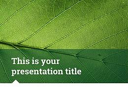 简约绿叶风格优质商务PPT模板