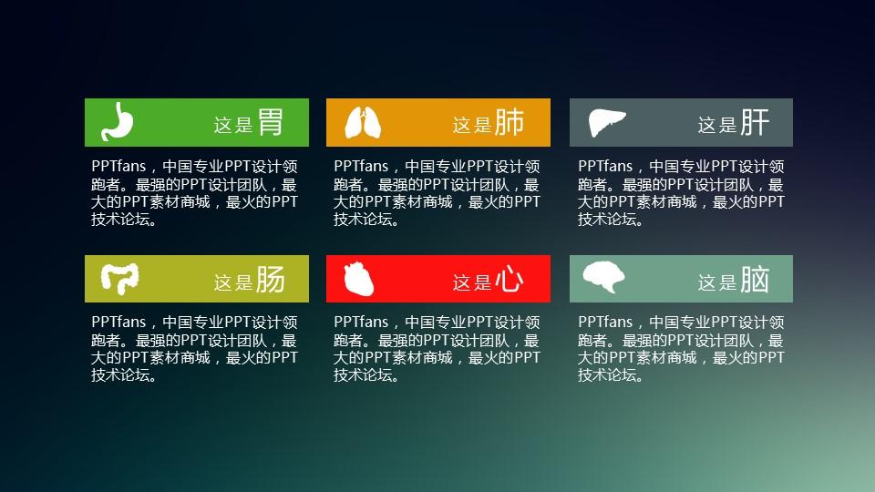 胃、肺、肝、肠、心、脑的介绍ppt素材模板_预览图1