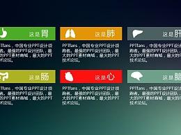 胃、肺、肝、腸、心、腦的介紹ppt素材模板