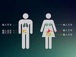 男性与女性的身体差异分析PPT素材