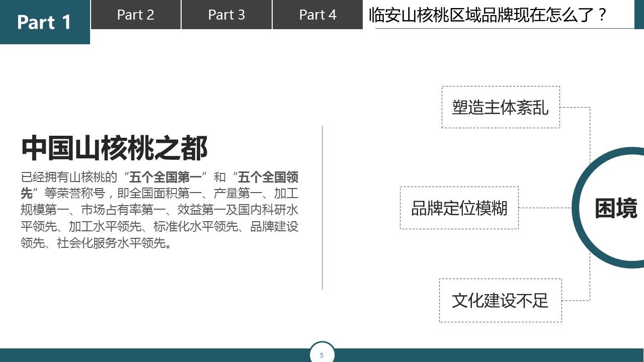 调研报告类型的PPT模板下载_预览图5