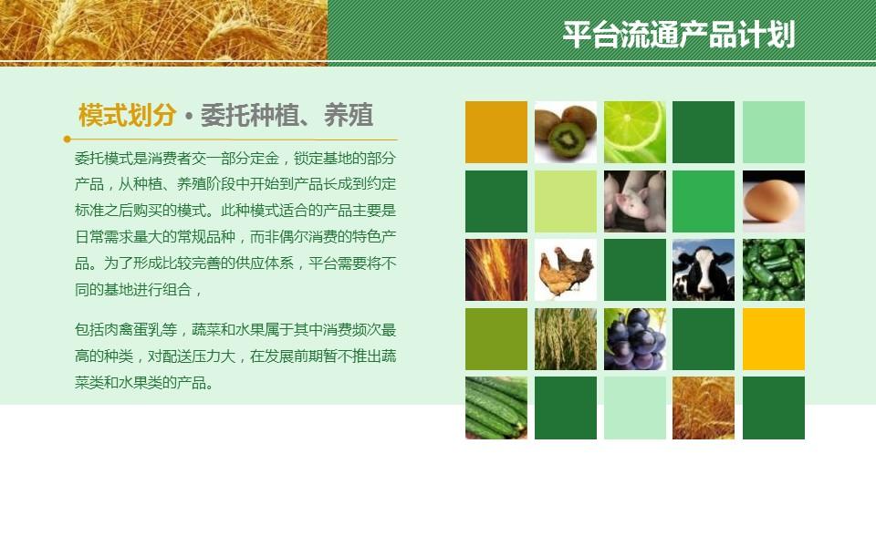 农业项目规划方案PPT模板下载_预览图9
