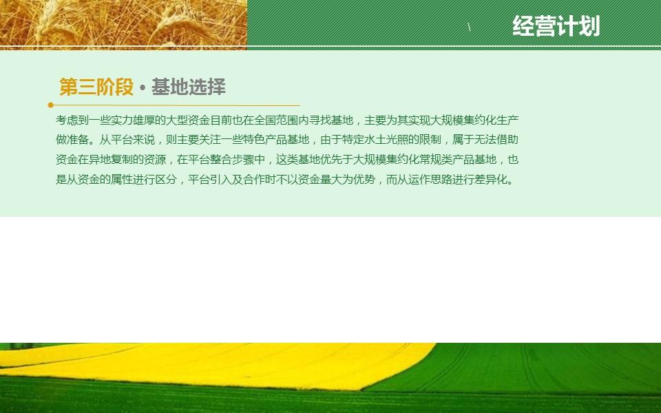 农业项目规划方案PPT模板下载_预览图18