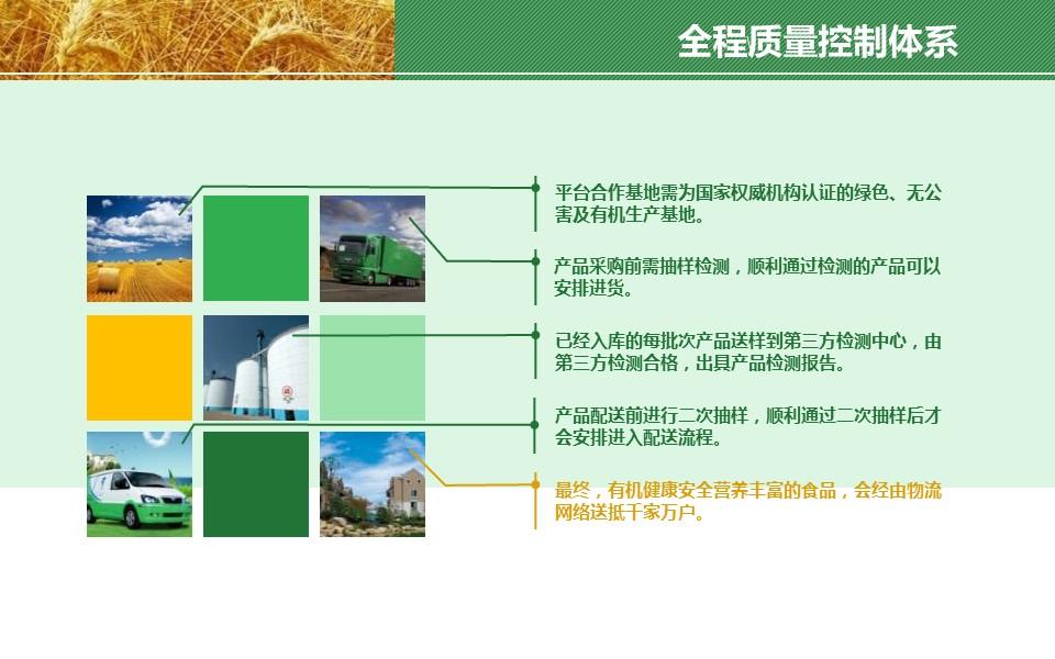 农业项目规划方案PPT模板下载_预览图7