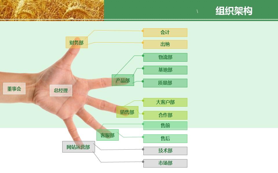 农业项目规划方案PPT模板下载_预览图20