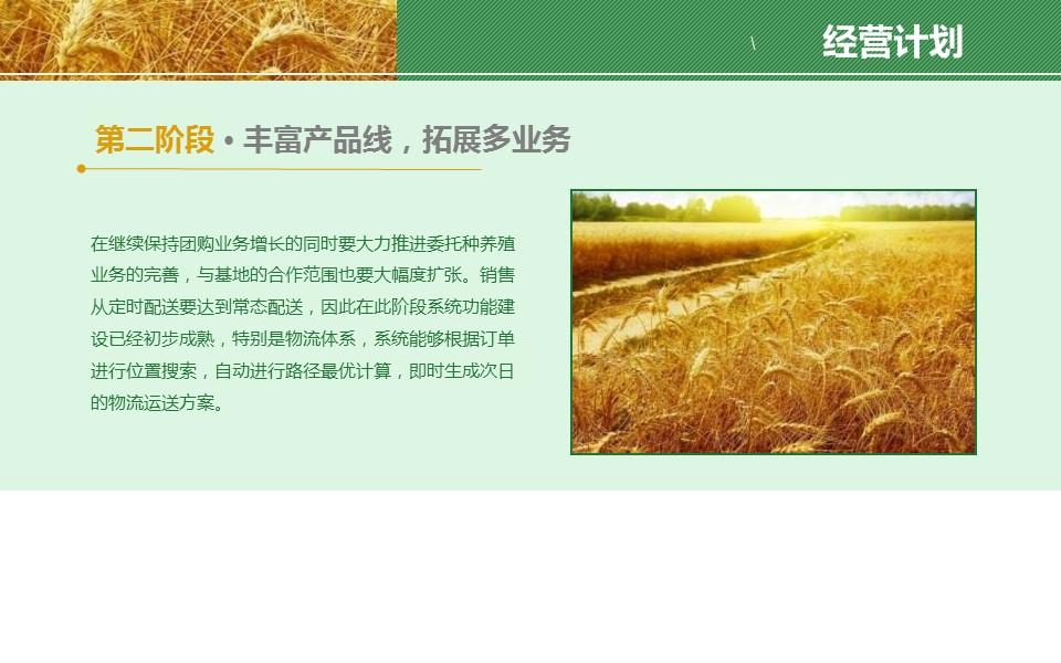 农业项目规划方案PPT模板下载_预览图14