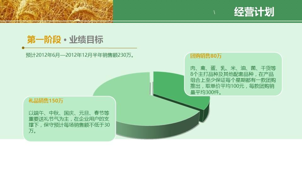 农业项目规划方案PPT模板下载_预览图13