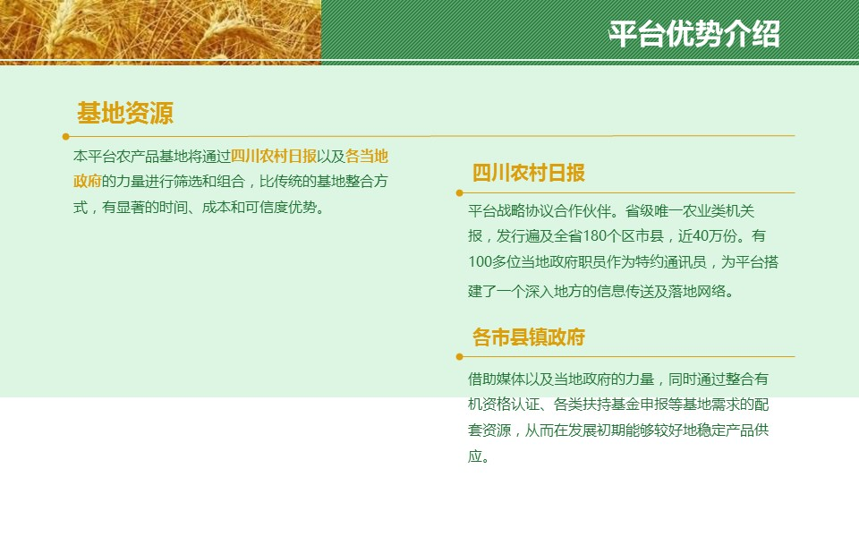 农业项目规划方案PPT模板下载_预览图5