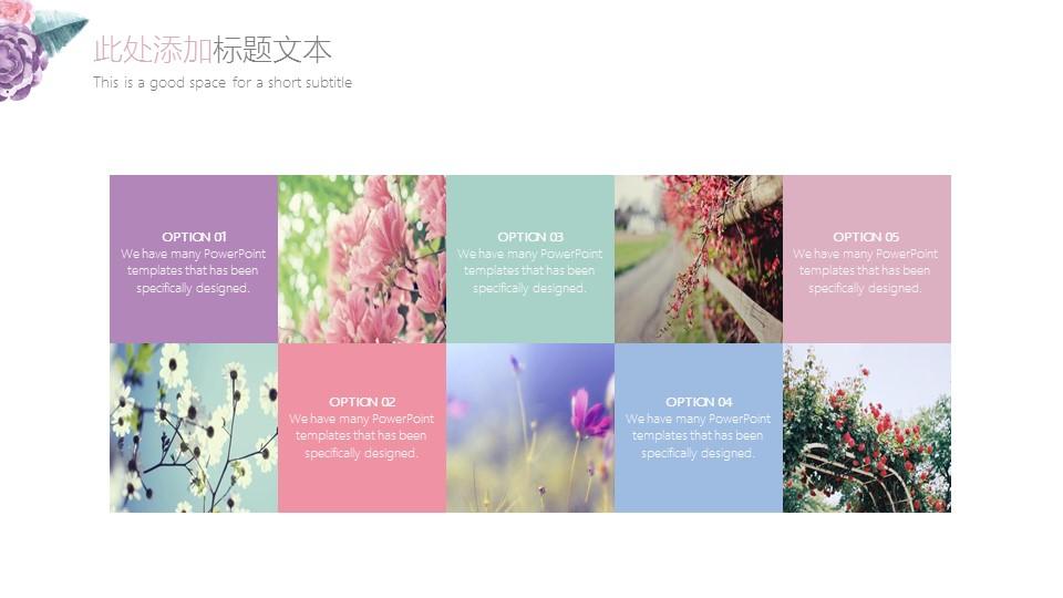小清新水彩花卉毕业答辩PPT模板_预览图7