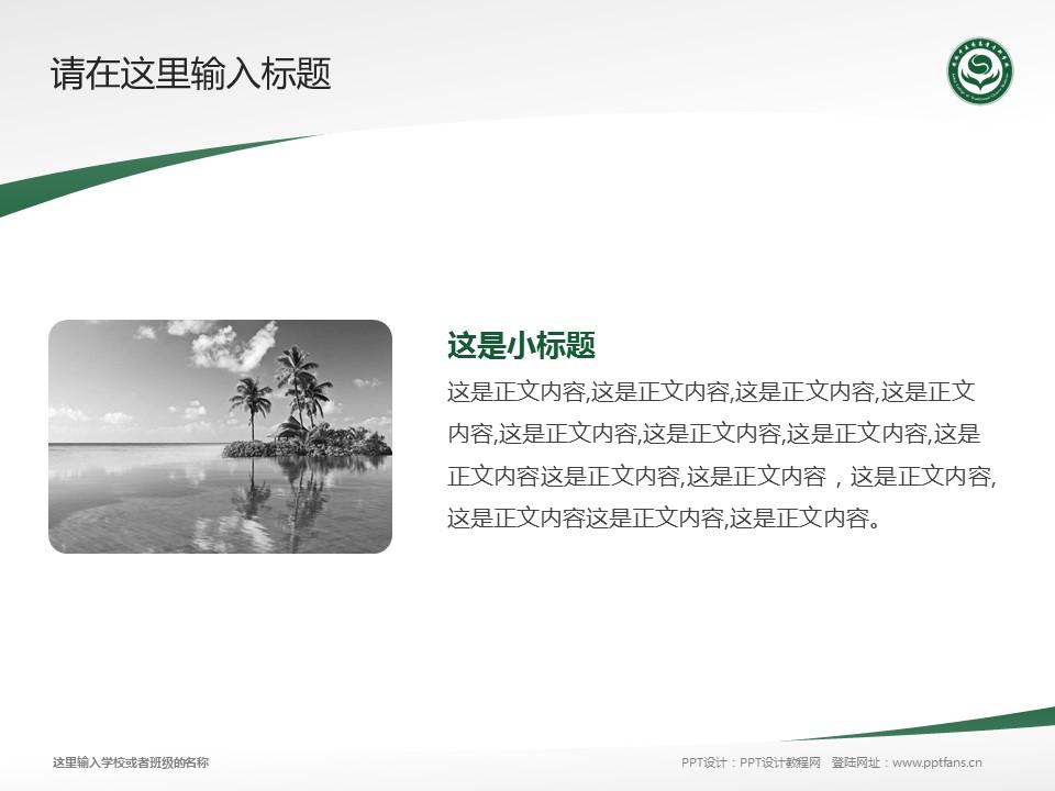 安徽中医药高等专科学校PPT模板下载_幻灯片预览图4