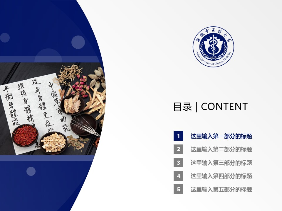 安徽中医药大学PPT模板下载_幻灯片预览图2