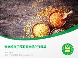 安徽粮食工程职业学院PPT模板下载