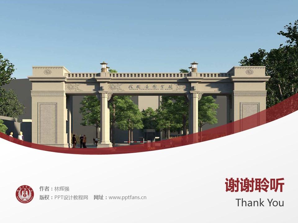 武汉音乐学院PPT模板下载_幻灯片预览图19