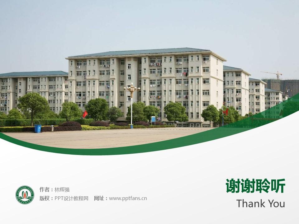 武汉东湖学院PPT模板下载_幻灯片预览图19