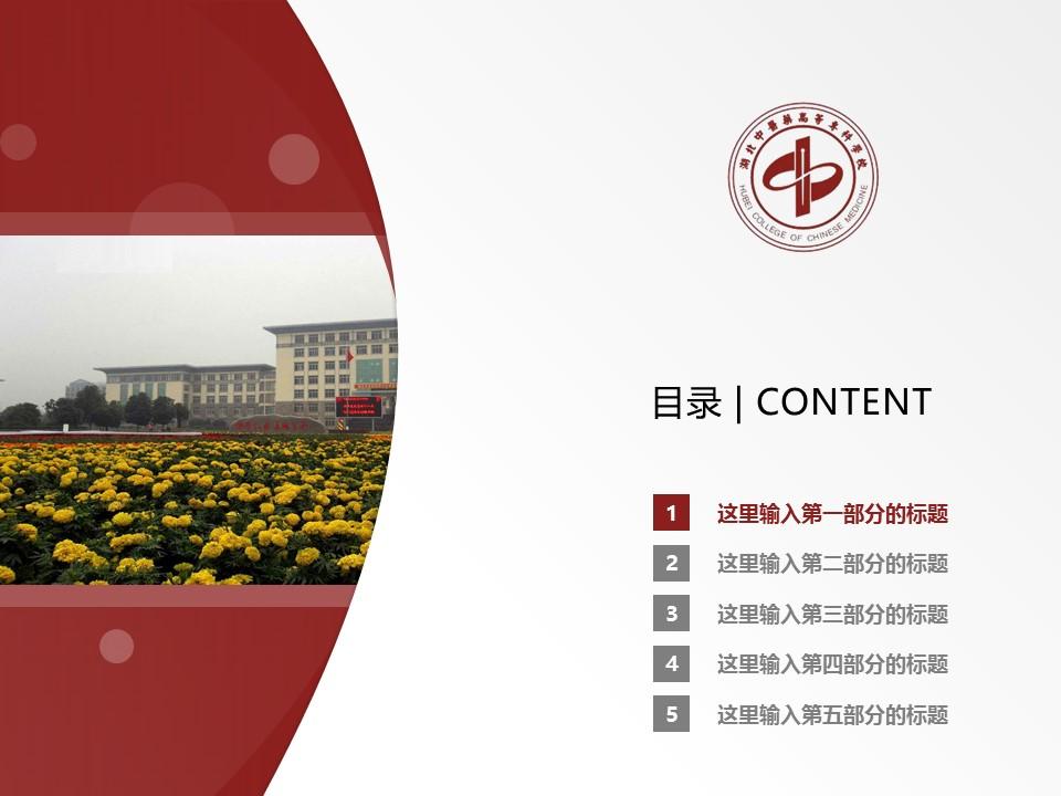 湖北中医药高等专科学校PPT模板下载_幻灯片预览图2