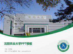 沈阳农业大学PPT模板下载
